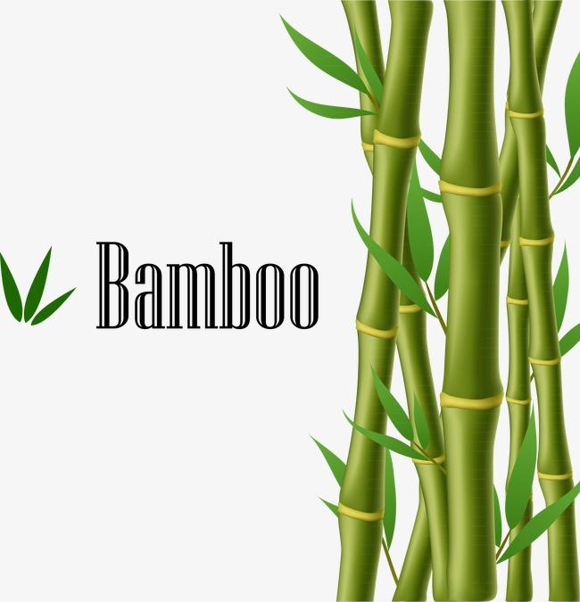 Bamboo Fixleintuch
