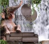 Echtleder Sofa Nepal